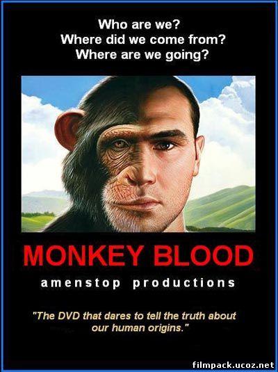 Кольцо власти 2: обезьянья кровь (2009) онлайн